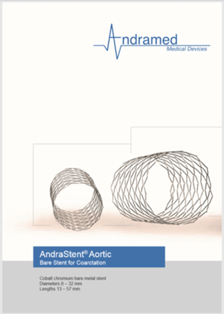 AndraStent® Aortic