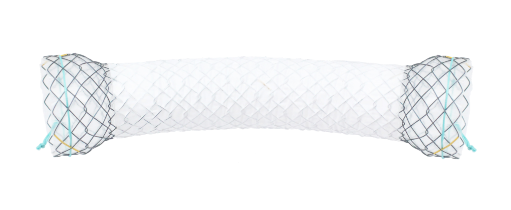 Hilzo Covered Oesophageal Stent