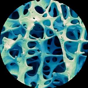 Osmycin